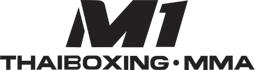 thai boxing school muay thai training