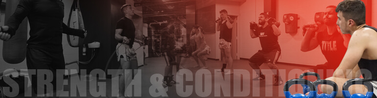 mma strength training mma fitness
